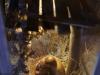 Krippen-Detailansicht-DSC02378